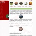 web Orbis Tour